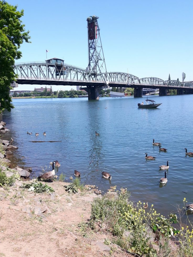 tom mccall waterfront park portland