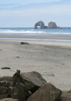 oregon coast rockaway beach